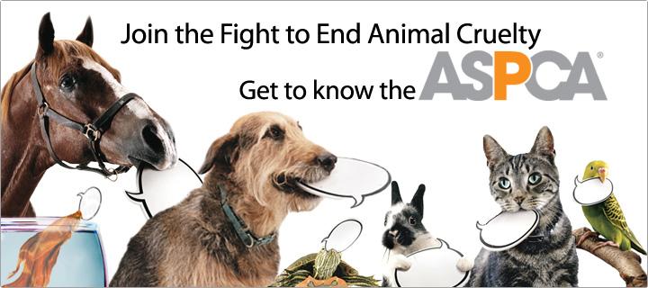 ASPCA - End Animal Cruelty